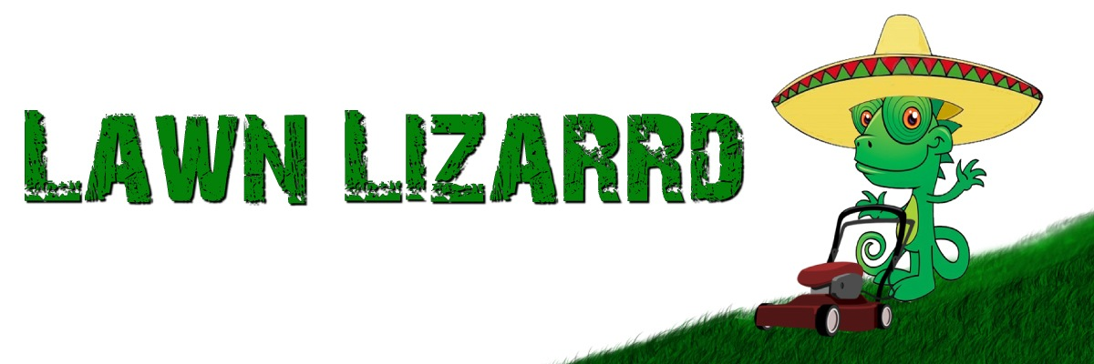Lawn Lizarrd Store