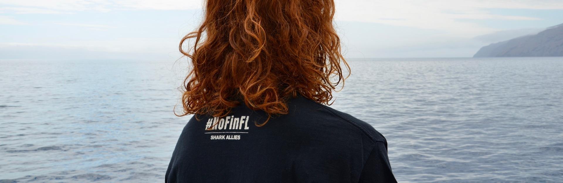 Shark Allies #NoFinFL Store