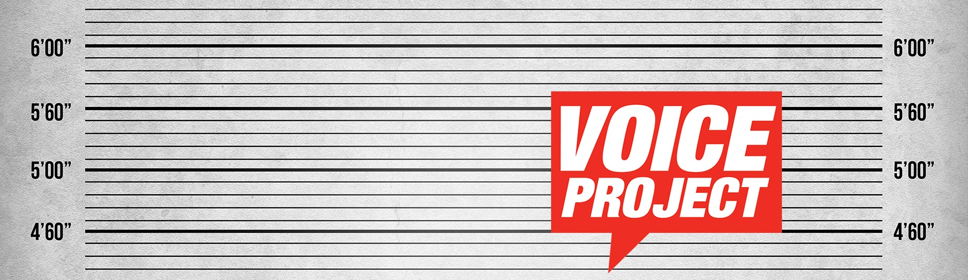 The Voice Project Store
