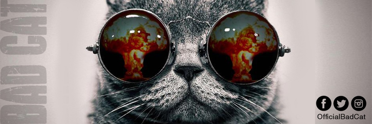 Bad Cat Clothing Store