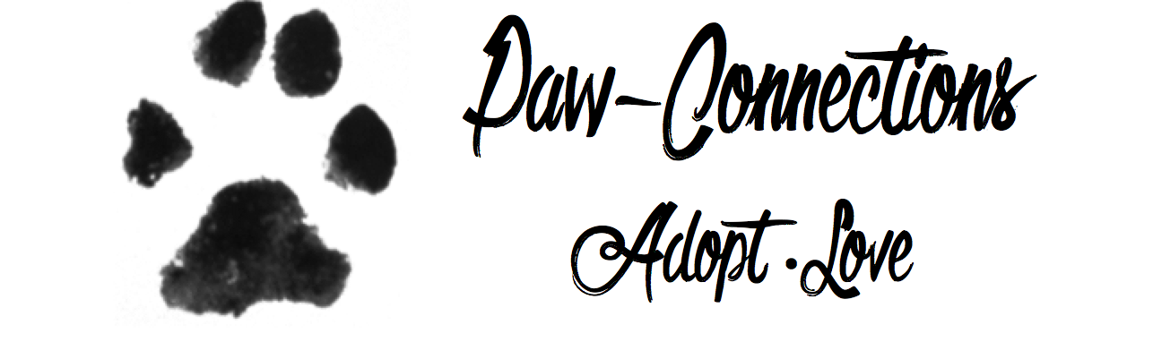 Paw Connections Official Apparel Store